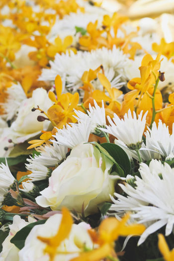 floral bouquet Floral Arrangement Yellow Flower Beauty In Nature Blooming Bouquet Bouquet Flower Bouquet Of Flowers Close-up Day Floral Bouquet Floral Photography Flower Flower Head Fragility Freshness Growth Nature No People Outdoors Petal Plant Selective Focus White Color White Flower Yellow
