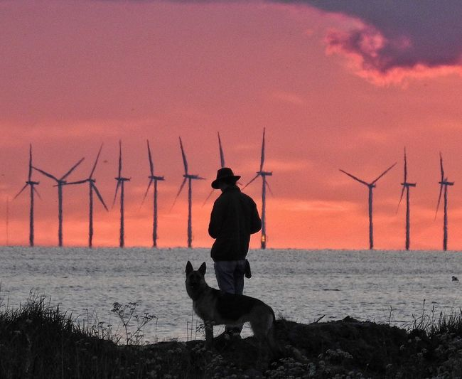 Silhouette man with dog standing by sea against sky during sunset