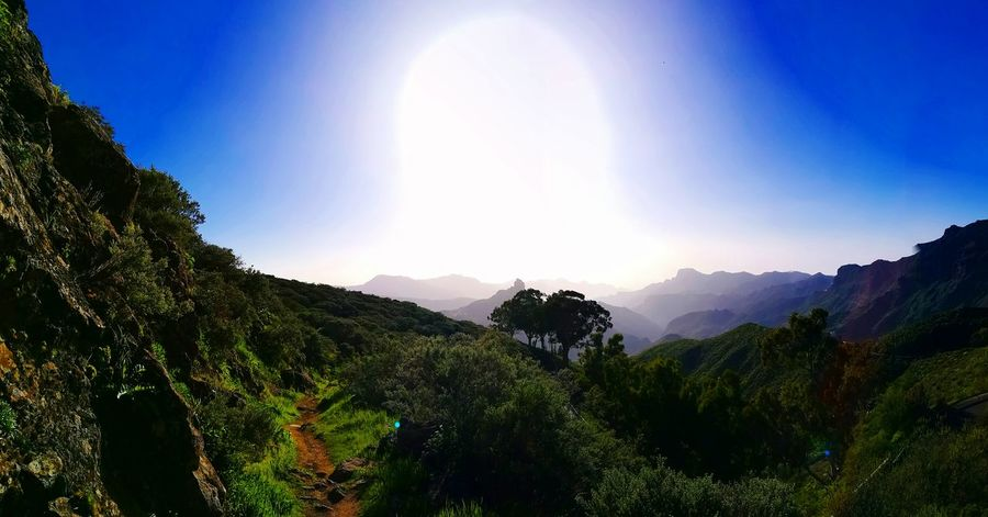Nature Mountain Sky Tree Mountain Range Landscape Sun Beauty In Nature Clear Sky No People Scenics Outdoors Astronomy