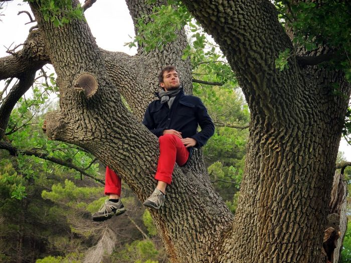 Full length of woman sitting on tree trunk