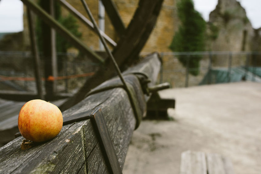 Apple Architecture Belgium Castle Classic Franchimont Nature Ruins Fort Fruit Nature Taking Over Old Outdoors Ruin Ruins Architecture Stone