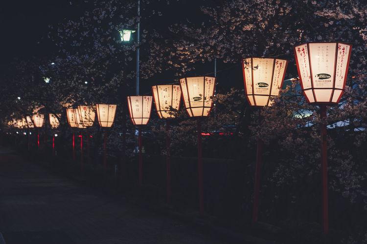 Illuminated lanterns hanging on street in city at night