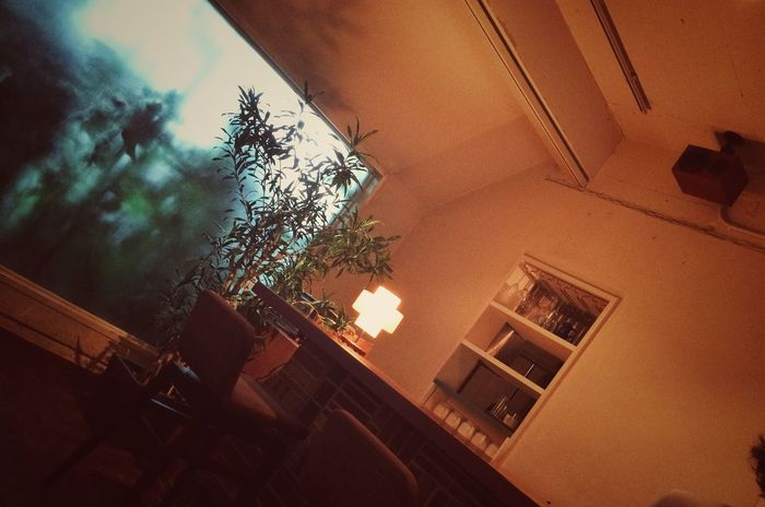Transparency Tokyo Look Around  Silhouette Window Quiet Moments Cafe Label Glow Silence