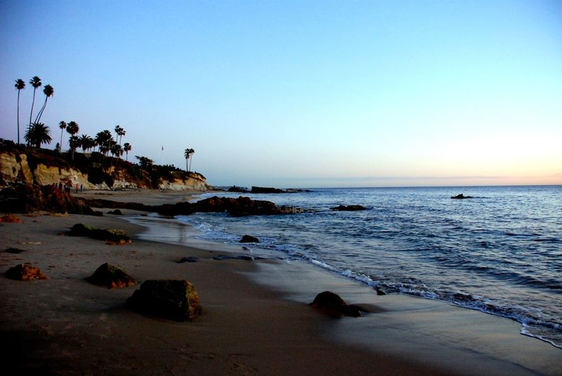 California Water Beach Horizon Over Water Tranquil Scene Scen Sky Clear Sky Blue Shore Tranquility Beauty In Nature Sand Vacations Coastline Seascape Tourism Travel Destinations Calm Ocean Sea And Sky Sea Photography Nature Trees