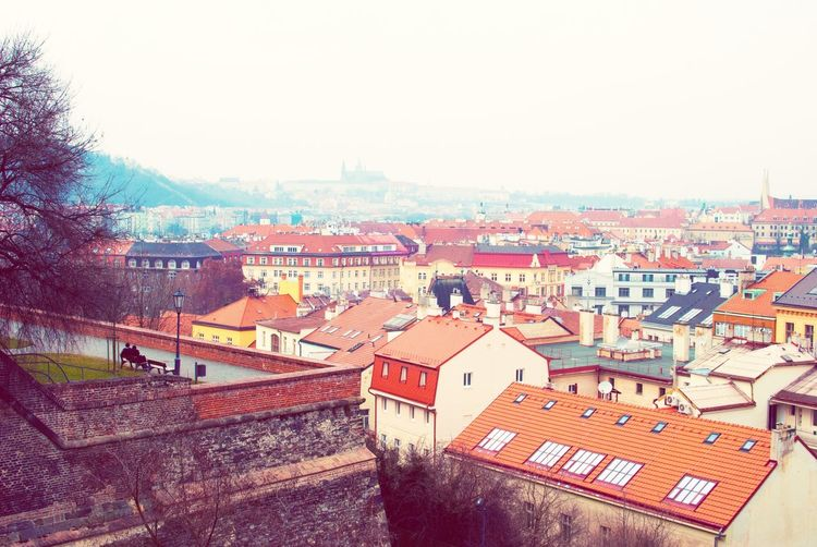 Praha Prague Visiting Prague Vinogrady