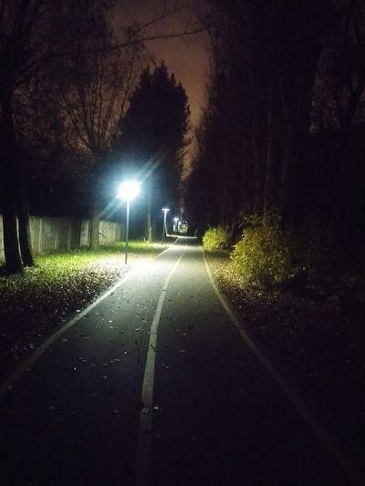 Night No People Outdoors Reutov Road Street Street Light Road Illuminated Asphalt Tree