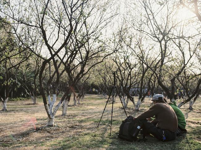 Plum Blossom Afternoon People 120 Film Mamiya645PRO