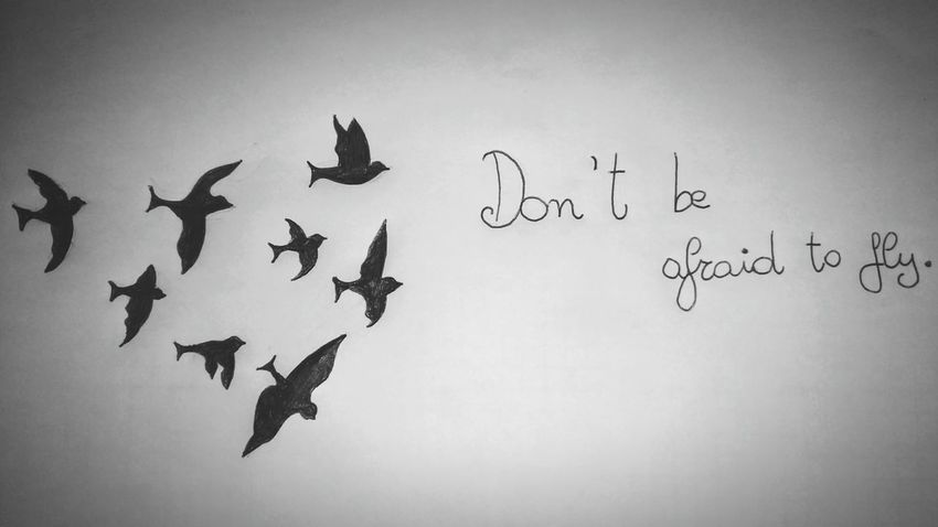 Relaxing Drawingtime Quotes Don't Be Afraid Fly Like A Bird