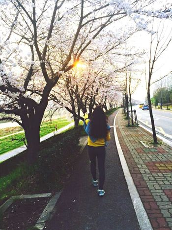 Walk This Way in My Village Go To Home Flower Photography Streetphotography My Back ~ How About my Yellow Knit ?? 🙊 Today Is A Good Day Everyone Is Welcome ~
