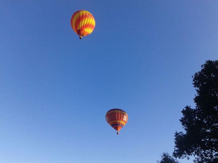 Balloons Balloonfiesta  Bristol, England United Kingdom Summer August 2016