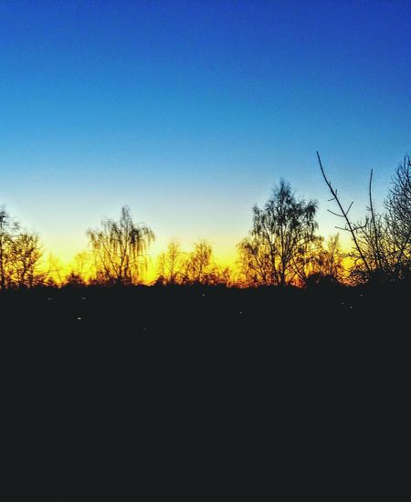 #Nature  Sky