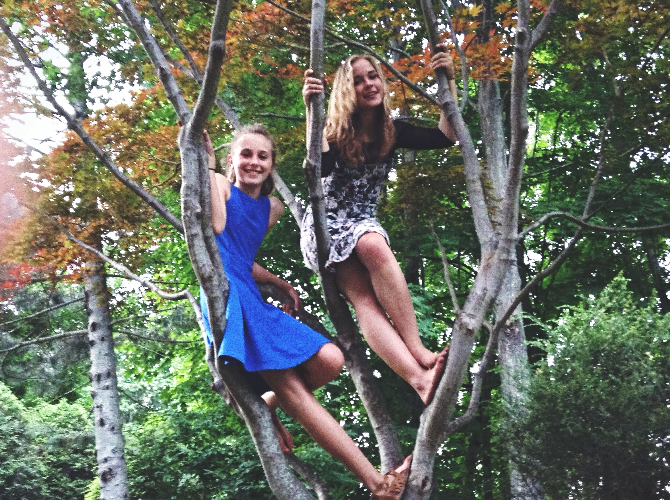tree, lifestyles, leisure activity, young adult, person, looking at camera, casual clothing, young women, portrait, smiling, full length, happiness, front view, standing, enjoyment, fun, three quarter length, forest