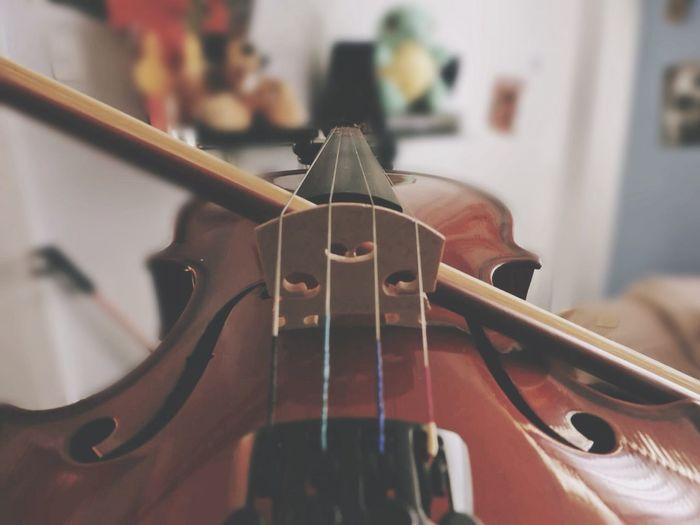 Close-up of cello