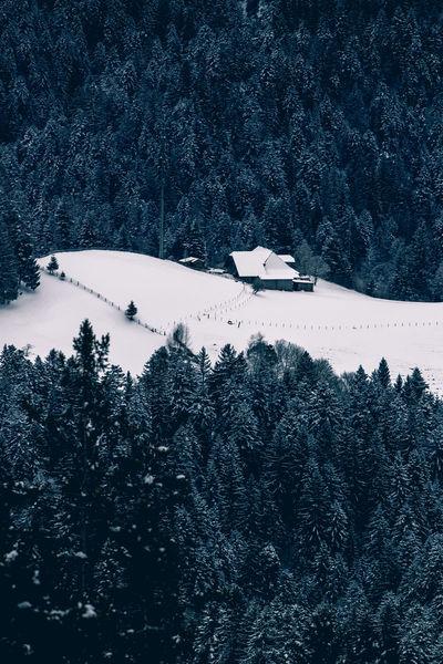 Abgelegener Bauernhof im winterlichen Emmental Chuderhüsi Emmental Lonely Winter Wintertime Bauernhof Cold Cold Temperature Forest Moody Remote Snow Wintertime ⛄ Woods