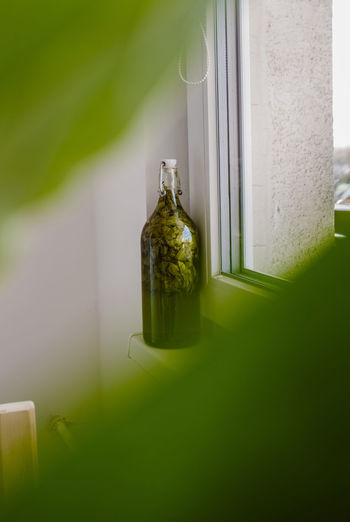 Bottle by window at home