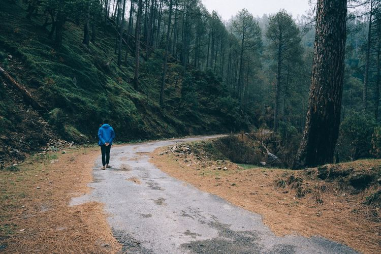 """Walking in the Pines"" Uttarakhand, Himalayas . The Creative - 2018 EyeEm Awards The Great Outdoors - 2018 EyeEm Awards The Traveler - 2018 EyeEm Awards Tree One Person Plant Rear View Leisure Activity Forest Real People Full Length Land Lifestyles Beauty In Nature Non-urban Scene Walking Nature Day The Way Forward Tranquility Scenics - Nature Growth Tranquil Scene"