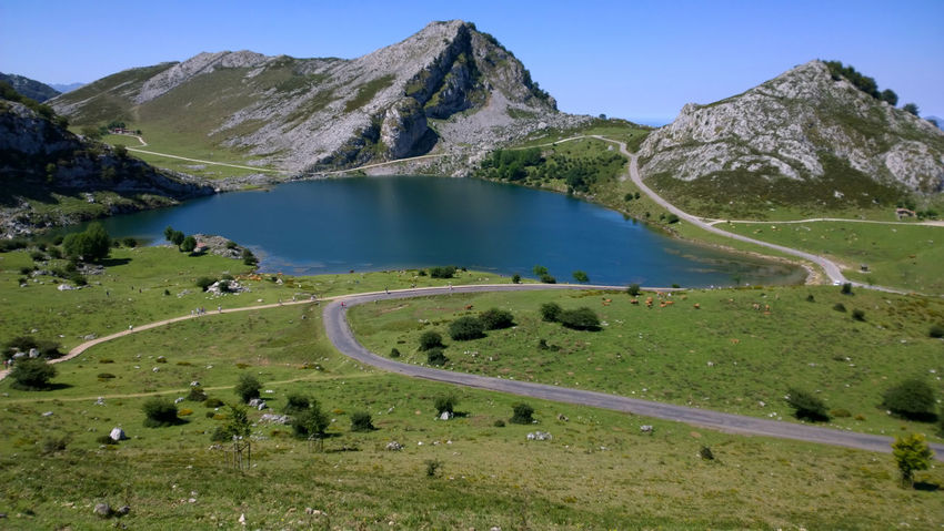 View of Lake Enol at Lakes of Covadonga in Asturias, Spain Asturias Blue Covadonga Enol Lake Lago Enol Lagos De Covadonga Lake Lakes  Landscape Mountain Nature Outdoors Peak Picos De Europa Picturesque Pond Road Rural Scenics Sightseeing SPAIN Tourism Travel Travel Destinations Water