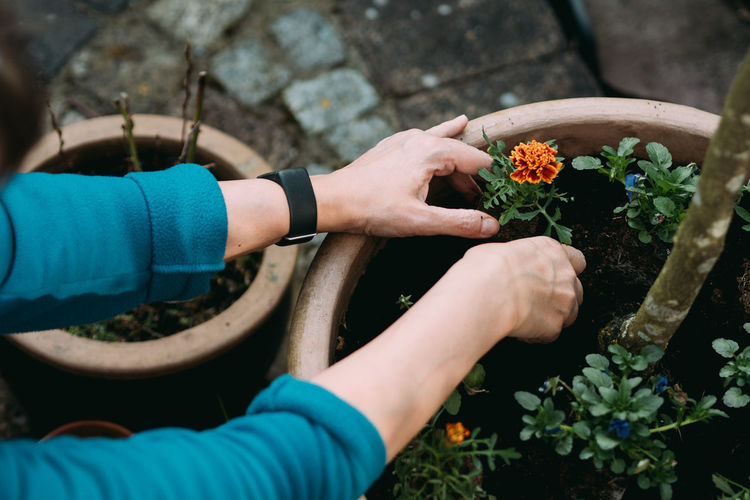 Gardening Gardening Day Finger Flower Flower Pot Flowering Plant Freshness Garden Photography Gardening Gardening Equipment Gardening Glove Growth Hand High Angle View Holding Human Hand Human Limb Leisure Activity Lifestyles Nature One Person Outdoors Plant Potted Plant Real People Vulnerability  Women