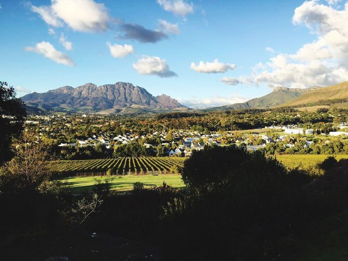 Stellenbosch Mountain Landscape Sky Tree Tranquil Scene Vineyards  Scenics Tranquility Beauty In Nature