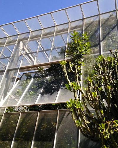 Growth Greenhouse Plant No People Built Structure Plant Nursery Architecture Outdoors Nature Day Photo Photography Portugal Porto Building Exterior