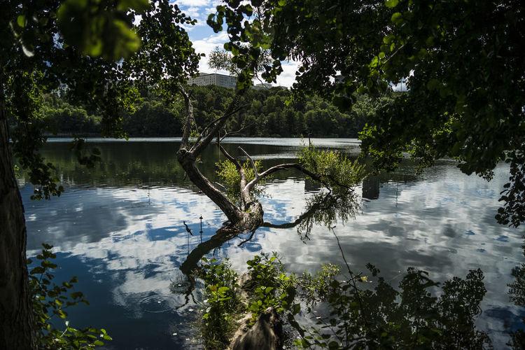 Swing reflecting the threesome. Freshness Scandinavia Trekanten Empty Swing Lake No People Reflection Tranquility