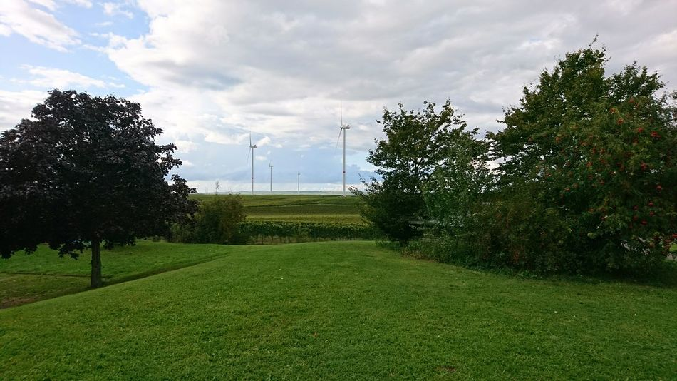 Wind turbines. Framed By Trees Germany Off The Beaten Path Autobahn Autobahnromantik Green Green Energy Nature Landscape Wind Turbine Wind Turbines Wind Energy Energy Man And Machine Man And Nature Symmetry Simplicity Tree Cloud - Sky Green Color Grass No People Growth Day