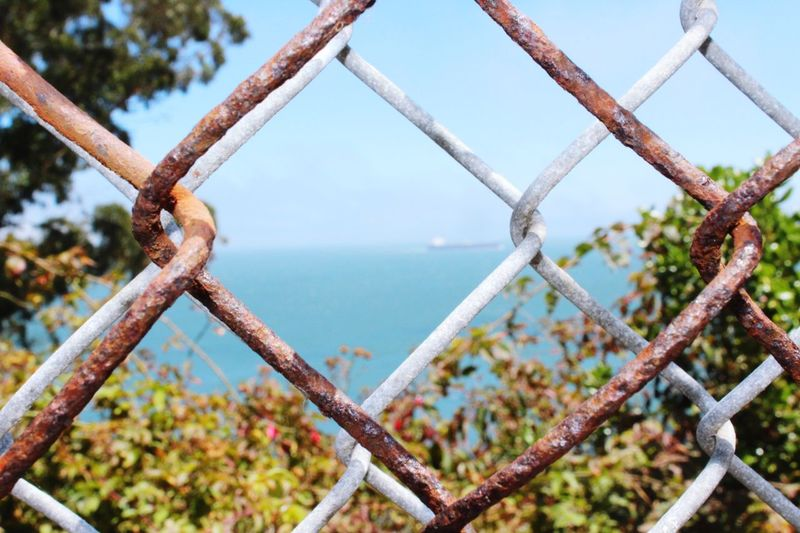 Security Metal Fence Focus On Foreground Protection Safety Day Sea Close-up Outdoors Plant Chainlink Fence Water Sky Nature Boundary No People Barrier Rusty