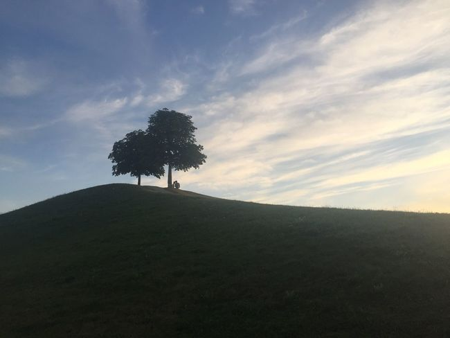 My favorite place in Karlsruhe. 🌱🍃 Sky Tranquility Hill Park Public Green Color Green Space Recreation  Outdoors Outside Landscape Horizon Sunset Outline Beauty In Nature Tranquil Scene Dark No People