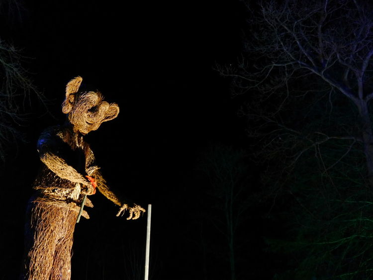 Bfg  Night Lights Night Photography RHS Harlow Carr Winter Glow Night Outdoors Willow Sculpture Winter Illuminations