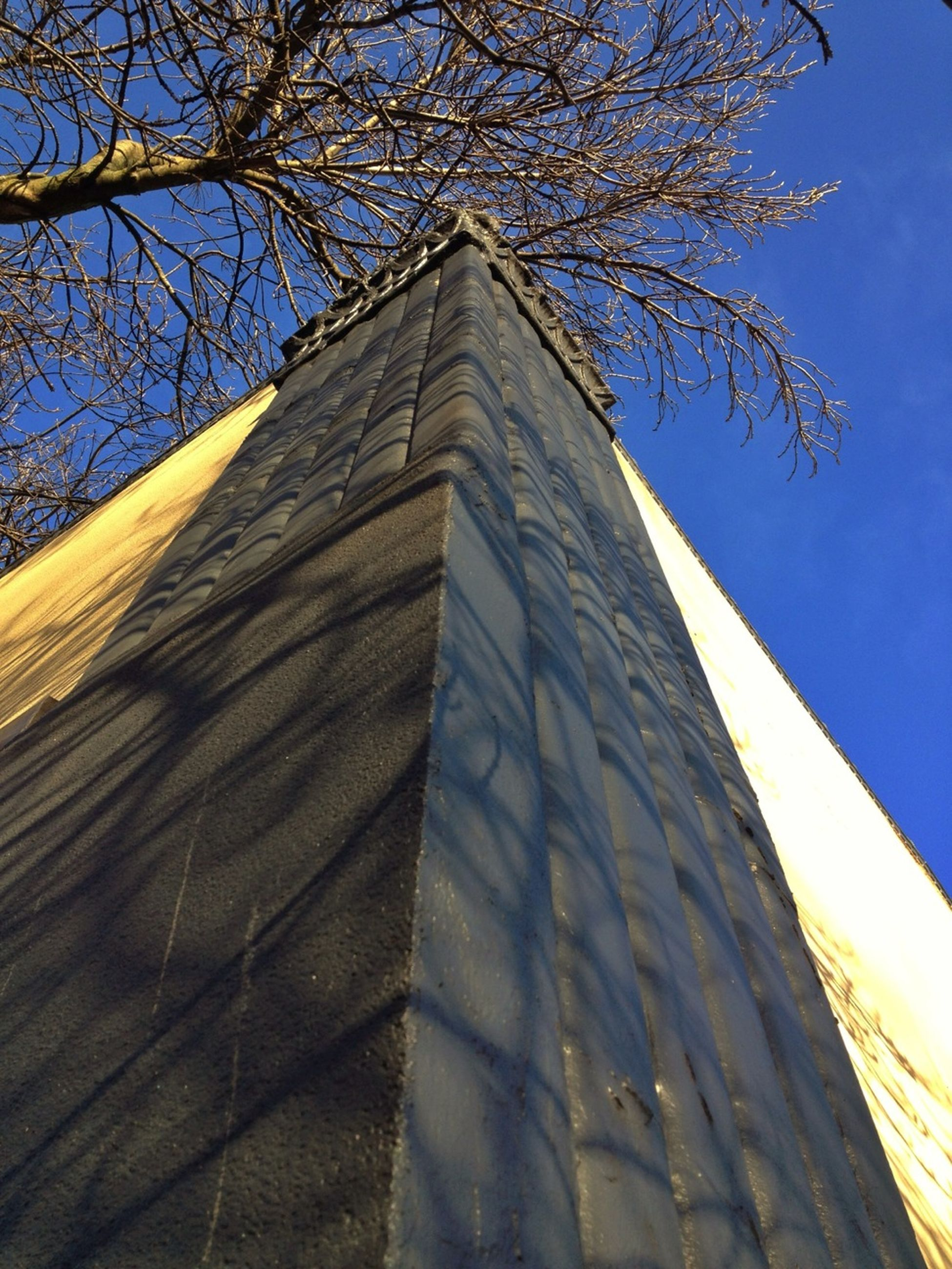 architecture, building exterior, built structure, low angle view, tree, branch, bare tree, clear sky, blue, sky, tower, tall - high, place of worship, sunlight, day, no people, outdoors, church, religion