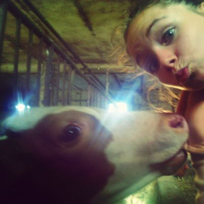 Village time!!! Grandparents animals :)))) butfirstletsmetakeaselfie :* Selfie Portrait That's Me Hello World FUNNY ANIMALS