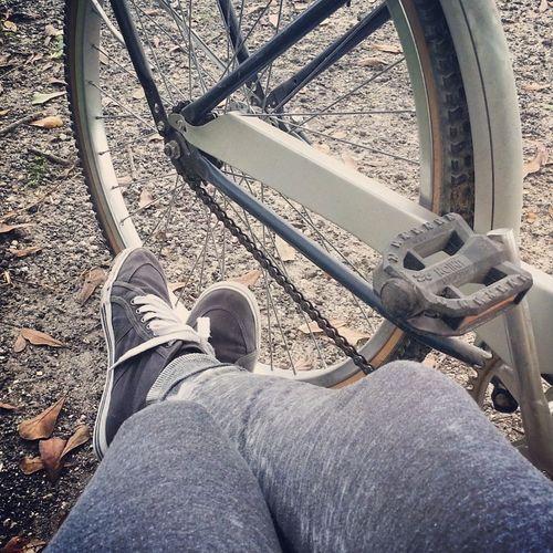Biking Bike Fall Fitness
