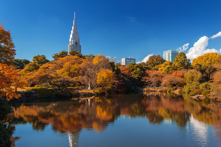 City Cityscape Japan Nature Travel Architecture Autumn Beauty In Nature Building Built Structure Change Lifestyles No People Outdoors Park Reflection Tower Travel Destinations Tree Water