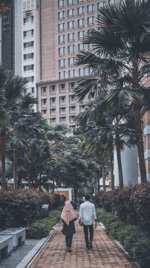 Rear view of people walking on palm trees in city