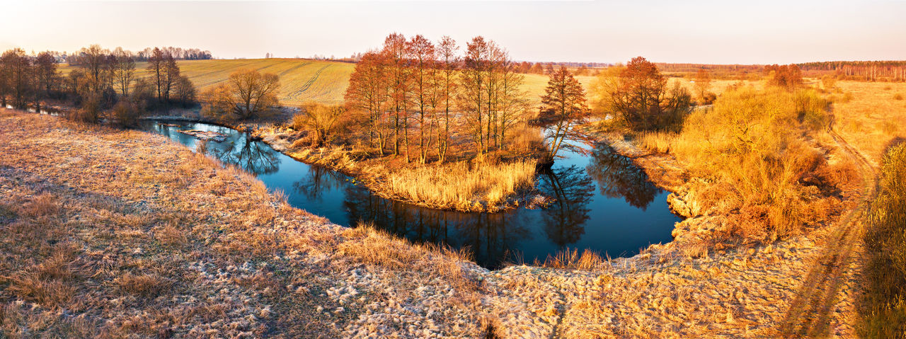 Water Tree Autumn Plant Tranquility Scenics - Nature Tranquil Scene No People Nature Beauty In Nature Sky Non-urban Scene Land Environment Day Reflection Change Landscape Lake Outdoors WoodLand Spring Belarus Aerial View April