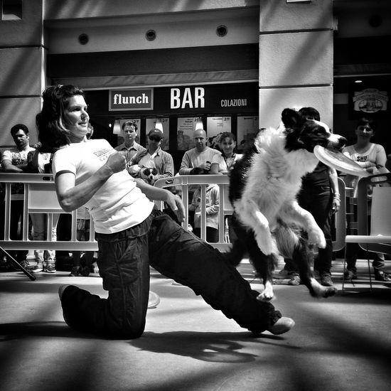 Punch Capturing Movement The Street Photographer - 2014 EyeEm Awards The Storyteller - 2014 Eyeem Awards The Moment - 2014 EyeEm Awards Dog
