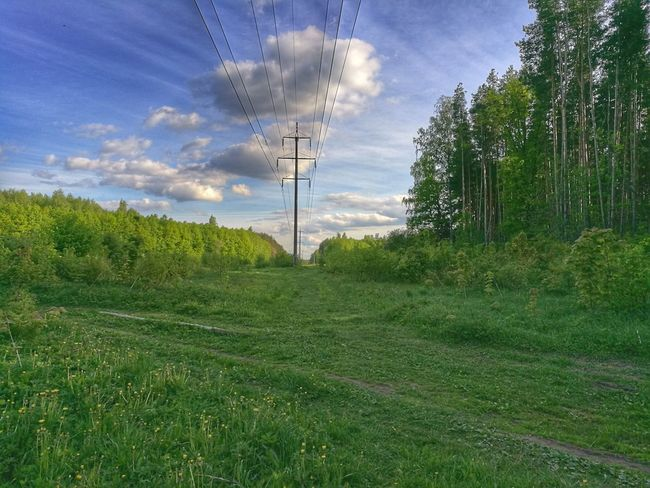 Green Color Cloud - Sky Tree No People Nature Cable Sky Electricity  Grass Beauty In Nature Technology Outdoors Day Scenics Podolsk Russia Outdoors The Great Outdoors - 2017 EyeEm Awards