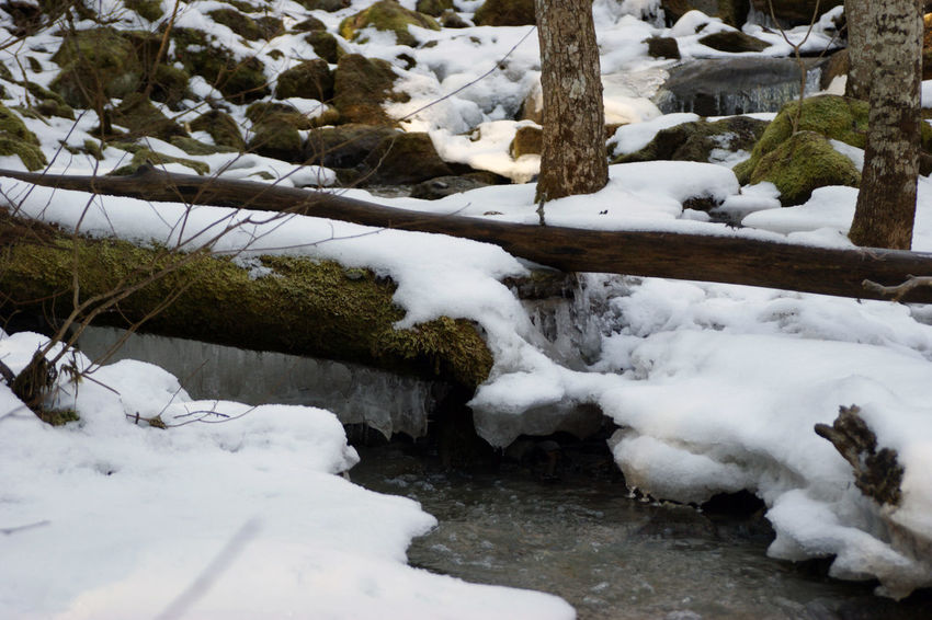 Beauty In Nature Cold Temperature Covered Covering Day Flowing Water Frozen High Angle View Ice Nature Outdoors Rock - Object Season  Snow Stream Tranquility Uppsala, Kvarnbo Weather White White Color Winter