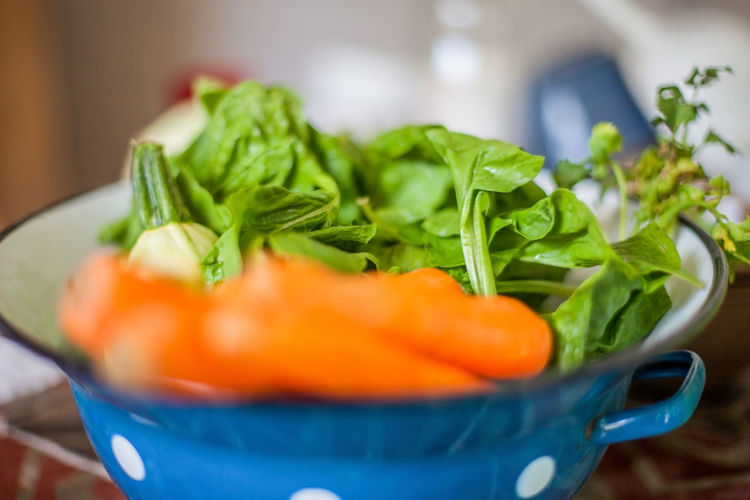 Close-up of vegetables in bowl