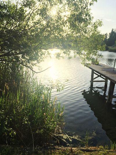 First Eyeem Photo Beutiful  Nature Photography Lake
