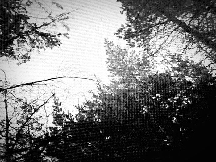 Through The Window Window Of The World  World In My Eyes