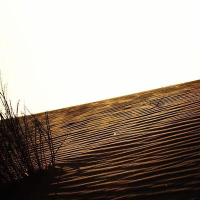 Swakopmund Namibia Swakop_mag Desert untouched natureshotz nature dry igers dune ig_shotz instapic picoftheday galaxys5 donttouch