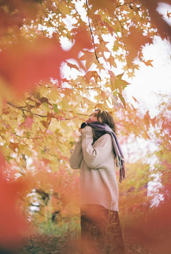 Rear view of woman photographing by tree