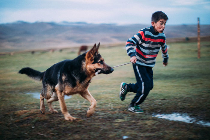 TWO DOGS RUNNING ON FIELD