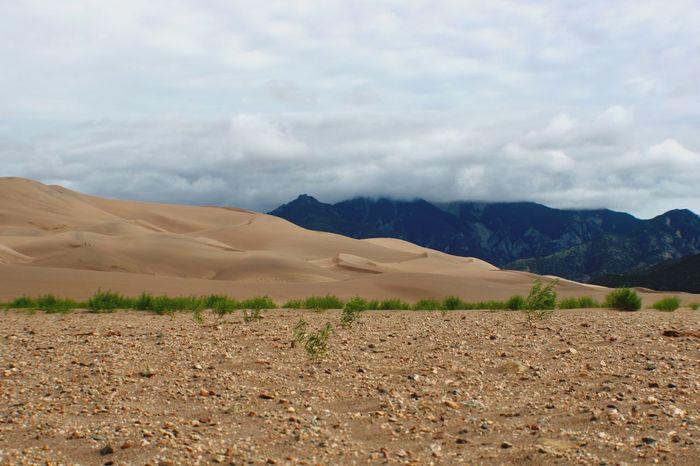 Textural Contrast, Great Sand Dunes NP Great Sand Dunes American West Nature Sand Dunes National Park Nature's Diversities