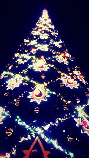 Christmas Around The World ,Christmas Fir-tree, New Year