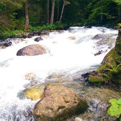 Cilginlar gibi akan Firtına deresi Furtuna River Water rize ayder camlihemsin karadeniz ben me remphin travel