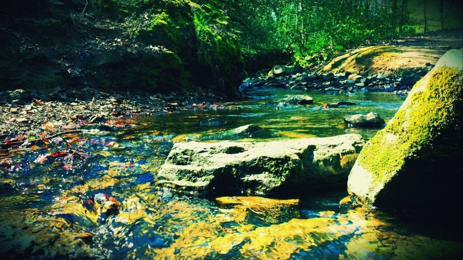 Just a stream. Water
