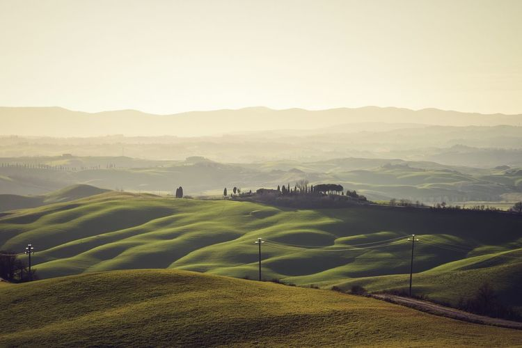 Tuscany Agriculture Beauty In Nature Day Field Grass Landscape Mountain Nature No People Outdoors Rural Scene Scenics Siena Sky Tranquil Scene Tranquility Tree