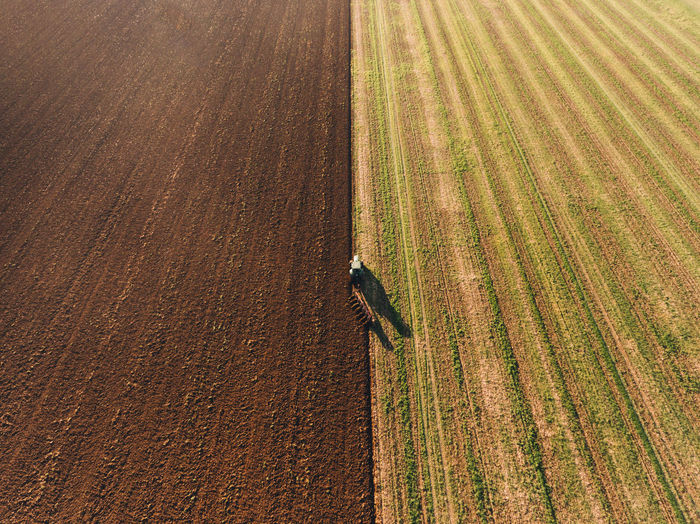 High angle view of corn field with harvester